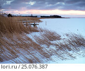 Купить «Germany, Mecklenburg-Western Pomerania, Western Pomerania Lagoon Area National Park, winterday on icy Saaler Bodden close Born auf dem Darss», фото № 25076387, снято 13 октября 2016 г. (c) mauritius images / Фотобанк Лори