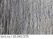 Купить «Texture of natural old wooden board», фото № 25083575, снято 16 августа 2018 г. (c) Сергей Эшметов / Фотобанк Лори
