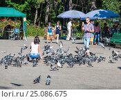 Мужчина фотографирует женщину, кормящую голубей. Man photographing woman feeds pigeons (2013 год). Редакционное фото, фотограф Игорь Новиков / Фотобанк Лори