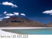 Laguna Verde landscape with Licancabur Volcano Altiplano SW Bolivia. Стоковое фото, фотограф Pete Oxford / Nature Picture Library / Фотобанк Лори