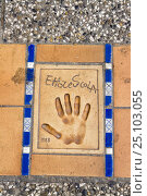 Купить «Hand print of Ettore Scola, Italian screenwriter and film director, on the Croisette in front of the Cinema Festival Palace, Cannes, France.», фото № 25103055, снято 21 августа 2018 г. (c) Nature Picture Library / Фотобанк Лори