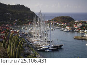 Купить «Superyachts docked in Gustavia Harbour, St Barthelemy, Caribbean.», фото № 25106431, снято 8 декабря 2019 г. (c) Nature Picture Library / Фотобанк Лори