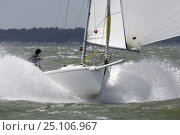 """Купить «J80 """"Jane"""" during the J80 Nationals in the Solent Royal Southern Yacht Club, UK, 2006. """"Jane"""" was the overall winner.», фото № 25106967, снято 22 июля 2018 г. (c) Nature Picture Library / Фотобанк Лори"""