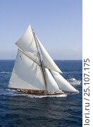"Купить «Classic superyacht ""Mariquita"" arriving from Cannes to Saint Tropez, France, for Les Voiles de Saint Tropez, October 2006.», фото № 25107175, снято 24 февраля 2019 г. (c) Nature Picture Library / Фотобанк Лори"