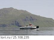 Купить «The Caledonian MacBrayne ferry crossing between the islands of the Inner Hebrides, Western Isles, Scotland. June 2005.», фото № 25108235, снято 14 августа 2018 г. (c) Nature Picture Library / Фотобанк Лори