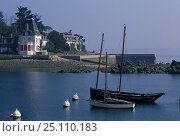 Купить «Two wooden yachts moored in the quiet fishing port of Douarnenez, Brittany, North Western France. Summer 1991.», фото № 25110183, снято 20 сентября 2018 г. (c) Nature Picture Library / Фотобанк Лори