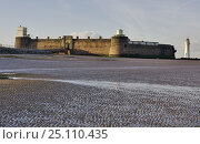 Купить «Fort Perch Rock, New Brighton, at low tide in the early morning. Merseyside.», фото № 25110435, снято 17 августа 2018 г. (c) Nature Picture Library / Фотобанк Лори