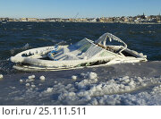 Купить «A small speedboat sunk by heavy ice and snow.», фото № 25111511, снято 15 августа 2018 г. (c) Nature Picture Library / Фотобанк Лори
