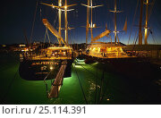 Купить «Superyachts lit up at night in Gustavia harbour during the St Barts Bucket, Caribbean.», фото № 25114391, снято 8 декабря 2019 г. (c) Nature Picture Library / Фотобанк Лори