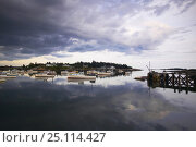 Купить «Heavy grey clouds reflecting around the boats moored in the harbour, Maine, USA.», фото № 25114427, снято 16 августа 2018 г. (c) Nature Picture Library / Фотобанк Лори