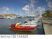 Купить «The dinghy dock at Gustavia, St.Barths, Caribbean.», фото № 25114623, снято 9 декабря 2019 г. (c) Nature Picture Library / Фотобанк Лори
