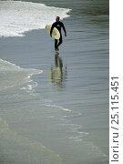 Купить «Surfer walking along Black Head Beach, Dunedin, New Zealand.», фото № 25115451, снято 15 августа 2018 г. (c) Nature Picture Library / Фотобанк Лори