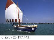 Купить «A traditional lateen rig sail boat or chiggiotta, Lagoon of Venice, Italy.», фото № 25117443, снято 24 сентября 2018 г. (c) Nature Picture Library / Фотобанк Лори
