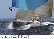 """""""All Smoke"""" the Reichel/Pugh 78 at Antigua Race Week. A crewman is at the end of the spinnaker pole having popped the kite. 2004.^^^Jochen Schuemann skippers the boat. Стоковое фото, фотограф Rick Tomlinson / Nature Picture Library / Фотобанк Лори"""