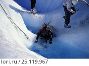 Купить «A diver ready to dive inside a crevasse full of water on the surface of Perito Moreno glacier, Los Glaciares National Park, Patagonia, Argentina», фото № 25119967, снято 16 января 2019 г. (c) Nature Picture Library / Фотобанк Лори