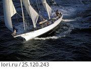 "Купить «Man on bowsprit of Herreshoff ketch classic superyacht ""Victoria of Duxbury"".», фото № 25120243, снято 16 октября 2019 г. (c) Nature Picture Library / Фотобанк Лори"