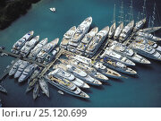Купить «Superyachts line the pontoons of Falmouth Harbour in Antigua, Caribbean.», фото № 25120699, снято 8 декабря 2019 г. (c) Nature Picture Library / Фотобанк Лори
