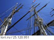 Купить «Tall ship masts, Sail Boston, Massachusetts, USA 1992», фото № 25120951, снято 16 августа 2018 г. (c) Nature Picture Library / Фотобанк Лори