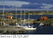 Купить «Yachts moor up to the rocks in the tideless waters of the Swedish Archipelago.», фото № 25121267, снято 20 сентября 2018 г. (c) Nature Picture Library / Фотобанк Лори