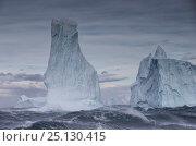 Купить «Iceberg in stormy sea, Antarctica, December 2015», фото № 25130415, снято 15 августа 2018 г. (c) Nature Picture Library / Фотобанк Лори