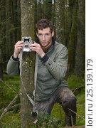 Купить «Dave Bavin setting up a trailcam in a dense coniferous plantation to photograph a radio-collared Pine Marten (Martes martes) reintroduced to Wales by the...», фото № 25139179, снято 26 марта 2019 г. (c) Nature Picture Library / Фотобанк Лори