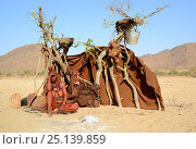 Купить «Himba woman sitting beside temporary hut with fire in front, Marienfluss Valley. Kaokoland, Namibia. October 2015», фото № 25139859, снято 26 мая 2019 г. (c) Nature Picture Library / Фотобанк Лори