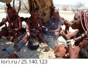 Купить «Himba women eating meal of goat meat together, Marienfluss Valley, Kaokoland Desert, Namibia. October 2015», фото № 25140123, снято 26 мая 2019 г. (c) Nature Picture Library / Фотобанк Лори