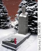 Купить «Могила И.В. Сталина у кремлевской стены.Некрополь.», фото № 25141679, снято 15 января 2017 г. (c) Александр Гаврилов / Фотобанк Лори