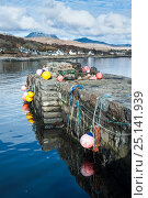 Lobster traps and buoys on pier at Craighouse, Jura, Inner Hebrides, Scotland, April 2014. Стоковое фото, фотограф Niall Benvie / Nature Picture Library / Фотобанк Лори