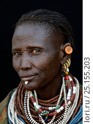Купить «Woman from the Toposa tribe displaying facial skin scarification and traditional jewels, Ethiopia, Omo Valley, March 2015.», фото № 25155203, снято 27 мая 2019 г. (c) Nature Picture Library / Фотобанк Лори