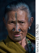 Купить «Apatani woman with facial tattoos and traditional cane nose plugs / Yapin Hulo made to make them look unattractive to males from other tribes. These facial...», фото № 25156763, снято 27 мая 2019 г. (c) Nature Picture Library / Фотобанк Лори