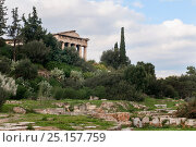 Купить «The Temple of Hephaestus surrounded by Cypress trees (Cupressus sempervirens), Olive trees (Olea europaea) and Prickly pears (Opuntia ficus-indica ). Attica region, Athens, Greece,  January 2011.», фото № 25157759, снято 25 сентября 2018 г. (c) Nature Picture Library / Фотобанк Лори
