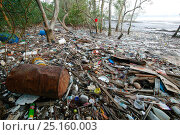 Купить «Pollution washed up in mangroves, Sungei Buloh Natural Park,  Singapore. Non-ex», фото № 25160003, снято 16 июля 2018 г. (c) Nature Picture Library / Фотобанк Лори