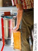 Купить «Beekeeper Nick Hunt taking honey comb to honey extracting machine, Usk, Gwent, Wales, UK. August 2014.», фото № 25167535, снято 17 августа 2018 г. (c) Nature Picture Library / Фотобанк Лори