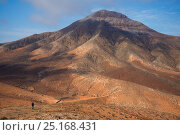 Купить «Arid mountainous landscape in Fuerteventura, Canary Islands. April 2013.», фото № 25168431, снято 8 декабря 2019 г. (c) Nature Picture Library / Фотобанк Лори