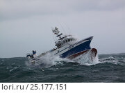 Купить «Fishing vessel 'Ocean Harvest' riding out stormy weather on the North Sea, January 2014. All non-editorial uses must be cleared individually.», фото № 25177151, снято 16 октября 2018 г. (c) Nature Picture Library / Фотобанк Лори