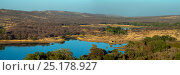 Купить «Panoramic of Ranthambhore National Park, Rajasthan, India. December 20056.», фото № 25178927, снято 25 мая 2019 г. (c) Nature Picture Library / Фотобанк Лори