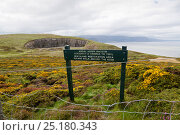 Купить «Fenced off Heathland restoration area with information sign,  The Bishop's Quarry, Great Orme, North Wales, UK, August.», фото № 25180343, снято 21 июля 2018 г. (c) Nature Picture Library / Фотобанк Лори
