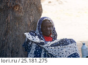 Купить «Village elder resting under acacia tree with  bottle of milk, rural Chad, 2002-2003.», фото № 25181275, снято 16 августа 2018 г. (c) Nature Picture Library / Фотобанк Лори
