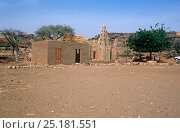 Village mosque, Sevare, Mali, 2005-2006. Стоковое фото, фотограф Steve O. Taylor (GHF) / Nature Picture Library / Фотобанк Лори
