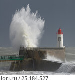 Купить «Waves crashing at harbor entrance during storm. Les Sables d' Olonne, Vendee, France, March 2014.», фото № 25184527, снято 14 декабря 2017 г. (c) Nature Picture Library / Фотобанк Лори