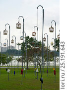 Купить «Cages of Peaceful Doves (Geopelia placida) on tall posts, Bedok Park, Singapore, July 2011.», фото № 25191643, снято 16 декабря 2017 г. (c) Nature Picture Library / Фотобанк Лори