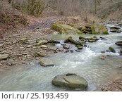 Купить «Горная речка, вода текущая среди камней и лес ранней весной», фото № 25193459, снято 26 января 2017 г. (c) DiS / Фотобанк Лори
