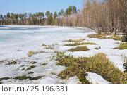 Купить «Весенний пейзаж», фото № 25196331, снято 28 апреля 2016 г. (c) Икан Леонид / Фотобанк Лори