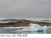 Купить «Iceberg and coast of Wrangel Island, Far Eastern Russia, August 2012.», фото № 25196435, снято 23 октября 2019 г. (c) Nature Picture Library / Фотобанк Лори
