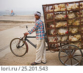 Купить «Man transporting chickens on a tricycle to market in a New Delhi suburb, India, November 2010.», фото № 25201543, снято 21 мая 2018 г. (c) Nature Picture Library / Фотобанк Лори