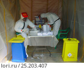 Купить «People in biohazard suits analysing blood samples to find the reservoir host of Ebola virus. Ebola Virus Disease in Mbomo killed 128 people in 2003 and...», фото № 25203407, снято 17 декабря 2017 г. (c) Nature Picture Library / Фотобанк Лори