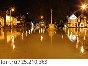 Купить «Flooded town of Datchet at night during February 2014 flooding, Berkshire, England, UK, 11th Februay 2014.», фото № 25210363, снято 19 октября 2019 г. (c) Nature Picture Library / Фотобанк Лори