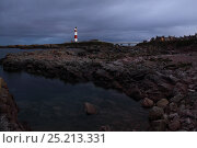 View along rocky coastline with Buchan Ness lighthouse in the distance, Northeast Scotland. August 2013. All non-editorial uses must be cleared individually. Редакционное фото, фотограф Philip Stephen / Nature Picture Library / Фотобанк Лори