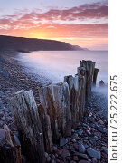 Купить «Sunset over Bossington Beach, Exmoor National Park, Somerset, England. Spring (March) 2012.», фото № 25222675, снято 24 января 2018 г. (c) Nature Picture Library / Фотобанк Лори